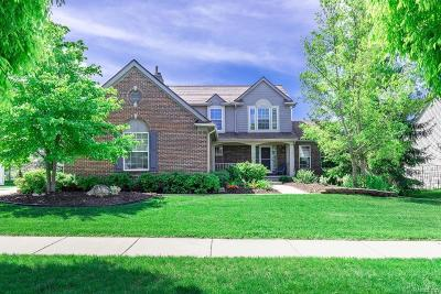 Ann Arbor Single Family Home Contingent - Continue To Show: 1829 Meadowside Drive