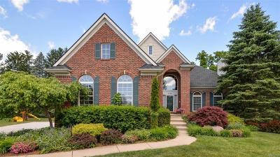 Ann Arbor Single Family Home For Sale: 1350 Emily Court