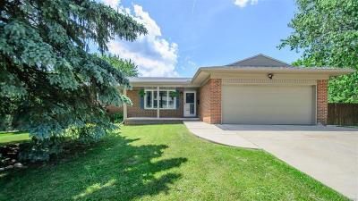 Ann Arbor Single Family Home For Sale: 2010 Churchill Drive