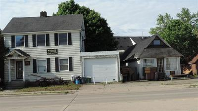 Ypsilanti Single Family Home For Sale: 955 Washtenaw Road