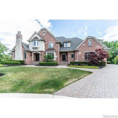 Northville Single Family Home For Sale: 18918 Bella Vista Ct.