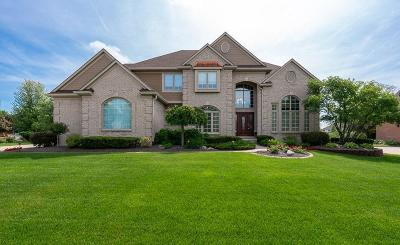 Canton Single Family Home Contingent - Continue To Show: 7534 Chesterfield Drive