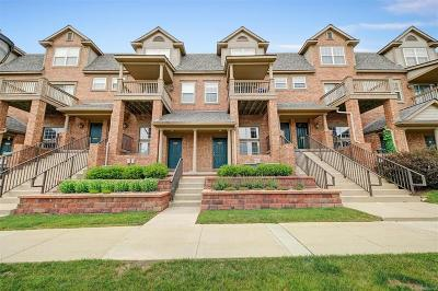 Ann Arbor Condo/Townhouse For Sale: 2739 Barclay Way
