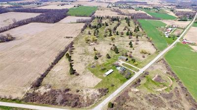 Lenawee County Single Family Home For Sale: 11064 Macon Highway