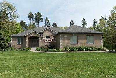 Green Oak Twp MI Single Family Home For Sale: $395,000