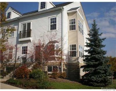 Ann Arbor Multi Family Home For Sale: 1155 Freesia Court