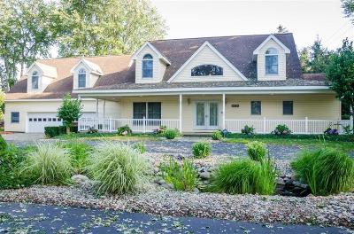 Van Buren Twp Single Family Home For Sale: 14711 Haggerty Road