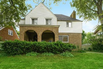 Ann Arbor Single Family Home For Sale: 1532 Packard Street