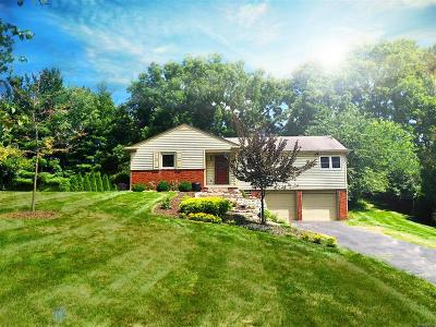 Rochester Hills Single Family Home For Sale: 499 S Rochdale Drive