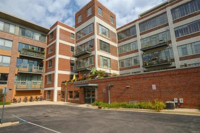 Ann Arbor Condo/Townhouse For Sale: 315 Second #209