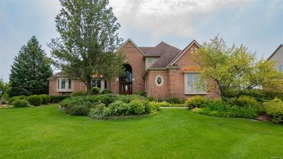 Plymouth Single Family Home For Sale: 12367 Howland Park Drive