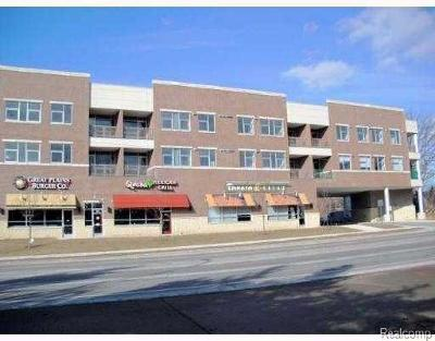 Ann Arbor Rental For Rent: 1771 Plymouth Road #305