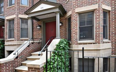 Ann Arbor Condo/Townhouse For Sale: 171 Ashley Mews Drive