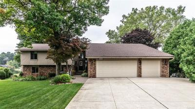 Commerce Twp Single Family Home For Sale: 4900 Oakwood Court