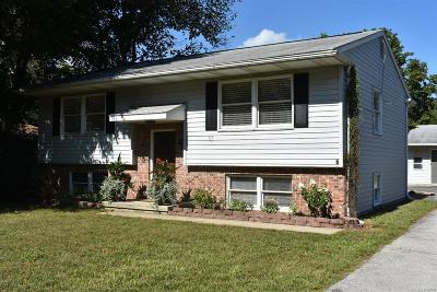 Milan Single Family Home For Sale: 585 Allen Road