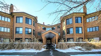 Ann Arbor Condo/Townhouse For Sale: 2115 Nature Cove Court #110