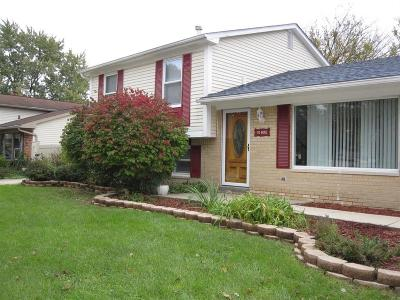 Canton, Canton Twp Single Family Home For Sale: 41805 Larimore Lane