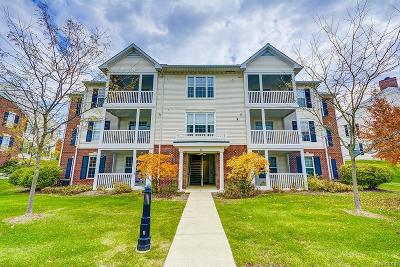 Ann Arbor, Scio, Ann Arbor-scio, Scio, Scio Township, Scio Twp Condo/Townhouse For Sale: 953 Summerfield Glen