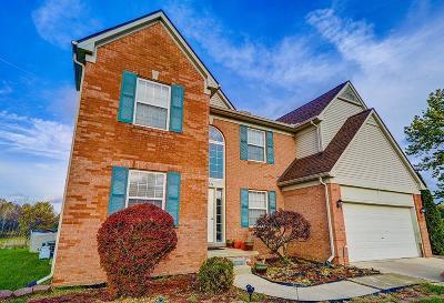 Van Buren, Van Buren Twp Single Family Home For Sale: 42952 Bradley Drive