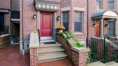 Ann Arbor Condo/Townhouse For Sale: 161 Ashley Mews