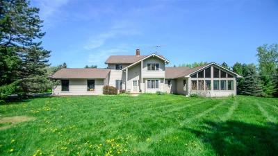 Ann Arbor, Scio, Ann Arbor-scio, Scio, Scio Township, Scio Twp Single Family Home For Sale: 4220 Saginaw Court