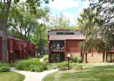 Ann Arbor, Ann Arbor (c), Ann Arbor Twp, Ann Arbpr Condo/Townhouse For Sale: 2413 Packard Street #57E