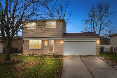 Superior, Superior Twp Single Family Home For Sale: 8887 Nottingham Drive