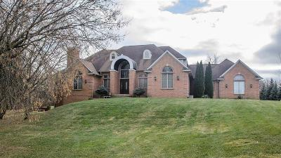 Superior, Superior Twp Single Family Home For Sale: 7688 Ellens Way Street