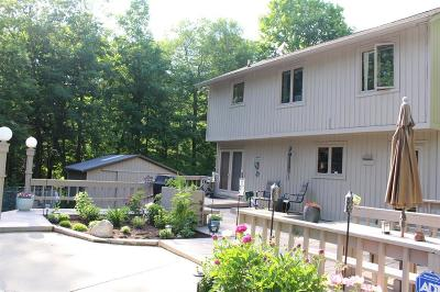 Addison Twp Single Family Home For Sale: 5175 Lake George Road