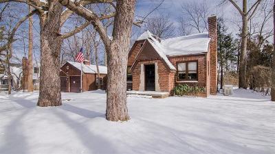 Ann Arbor Single Family Home For Sale: 584 Allison Drive