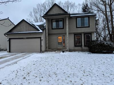 Ann Arbor Single Family Home For Sale: 1420 Northbrook Drive