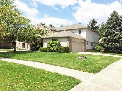 Ann Arbor Single Family Home For Sale: 3031 Cedarbrook Road