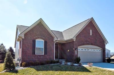 Superior, Superior Twp Single Family Home For Sale: 8386 Ardmoor Drive