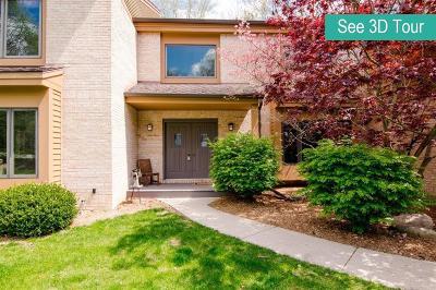 Ann Arbor Single Family Home For Sale: 3116 Overridge Drive