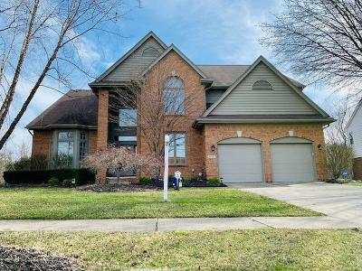 Novi Single Family Home For Sale: 45547 Irvine Drive