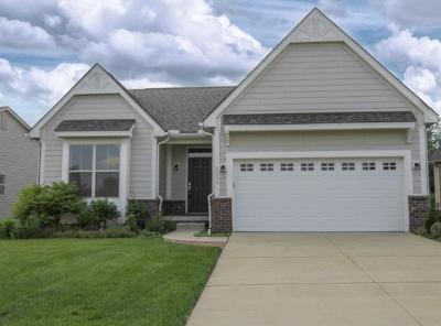 Superior, Superior Twp Single Family Home For Sale: 8209 Stamford Road