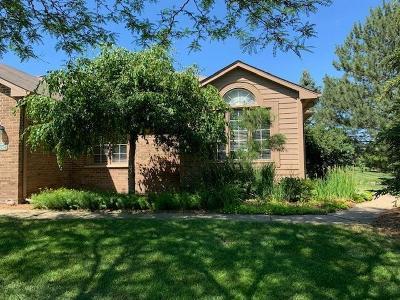 Ann Arbor Condo/Townhouse For Sale: 1292 Pepperidge Way