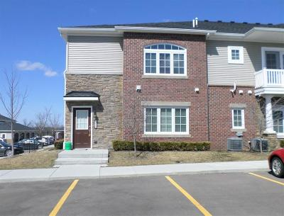 Ann Arbor, Scio, Ann Arbor-scio, Scio, Scio Township, Scio Twp Rental For Rent: 5619 Arbor Chase Drive