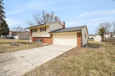 White Lake Single Family Home For Sale: 407 S Teggerdine Trail