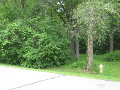 Ypsilanti Residential Lots & Land For Sale: 2544 Eastlawn Ave