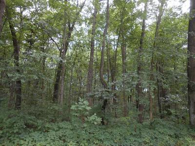 Washtenaw County Residential Lots & Land For Sale: Joslin Lake Road
