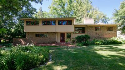 Ann Arbor Single Family Home For Sale: 2410 Londonderry Road
