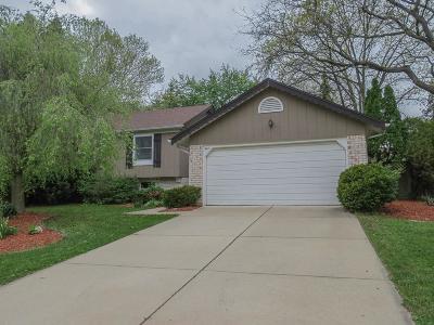 Ann Arbor Single Family Home For Sale: 3477 Gettysburg Road