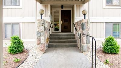 Superior Twp, Ypsilanti, Ypsilanti Twp Condo/Townhouse For Sale: 1625 Cliffs Landing #302D