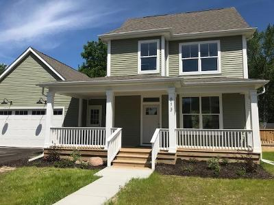 Ann Arbor Single Family Home For Sale: 613 Ironwood