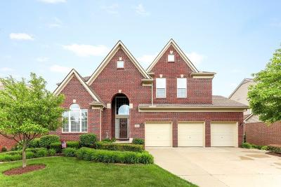 NORTHVILLE Single Family Home For Sale: 49863 Parkside Drive