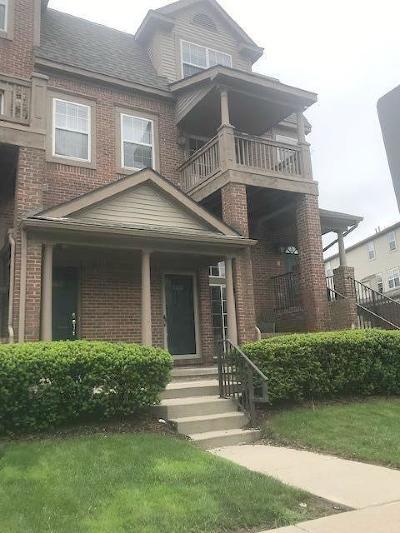 Ann Arbor Condo/Townhouse For Sale: 2774 Barclay Way