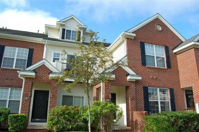 Ann Arbor, Scio, Ann Arbor-scio, Scio, Scio Township, Scio Twp Rental For Rent: 229 Scio Village Court #213