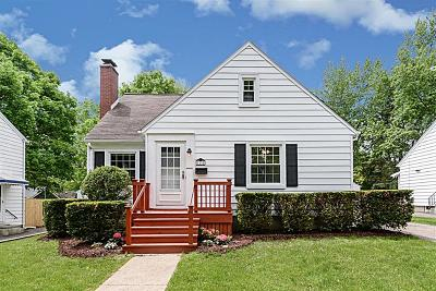 Ann Arbor Single Family Home For Sale: 1134 Hutchins Avenue
