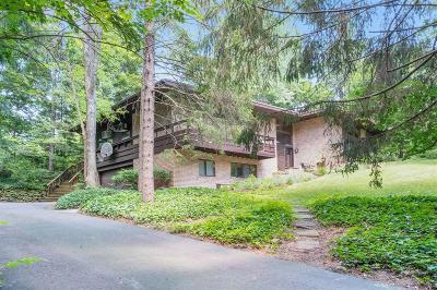 Ann Arbor Single Family Home For Sale: 2801 Washtenaw Avenue
